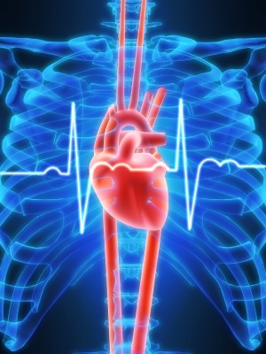 German Researchers Discover Heart Attack Gene-8098